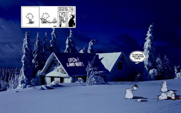 Real-Calvin-and-Hobbes_05