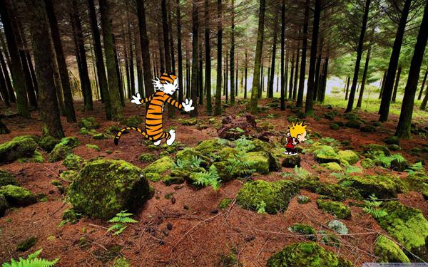 Real-Calvin-and-Hobbes_14